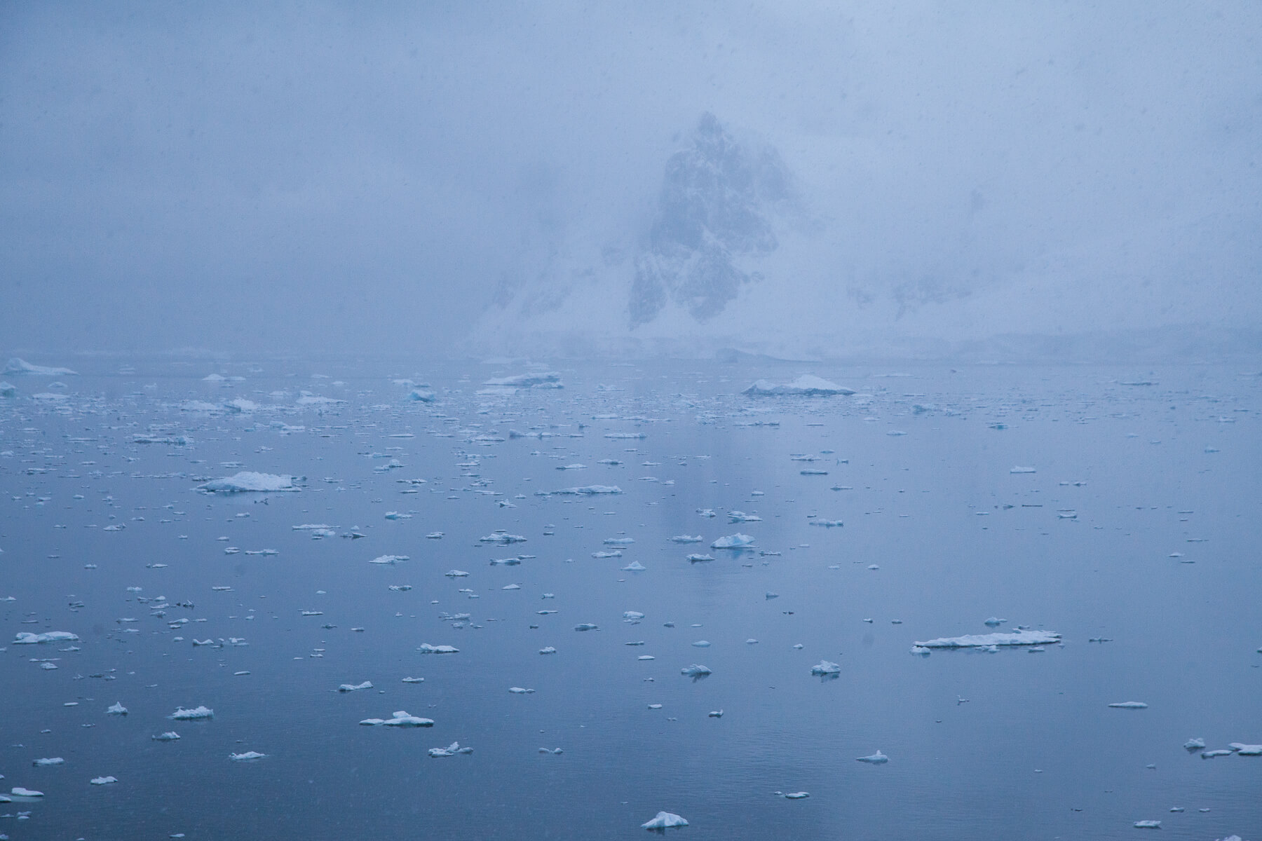 antarctica_selects-7996